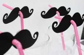 moustache_12_600x393